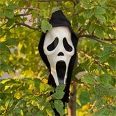 Scary mask in tree