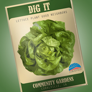 Dig it seed packet